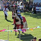 Jousting Champion at Medieval Fayre by JimmyChi