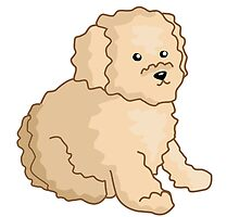 Toy Poodle Illustration by PatiDesigns