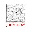 """Ipad Case: """"You know nothing (about cholera), John Snow"""" by Alberto Cairo"""
