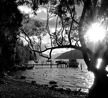 Moored for Sunset by Nicole Barnes