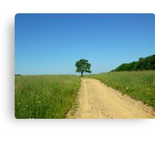 The Road and The Field  Canvas Print