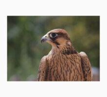 Falco peregrinus pelegrinoides Kids Tee