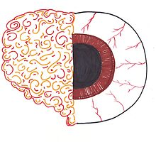 Brain/Eye by SteveHanna