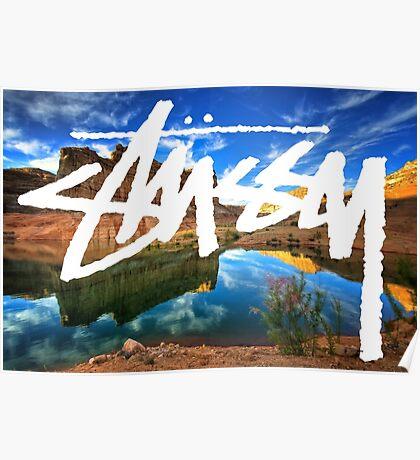 Stussy Desert Poster