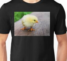 Cute baby chick Unisex T-Shirt
