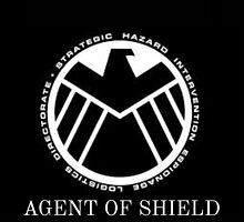 Marvel agents of shield  by wannabeartist