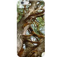 The Harsh Climb iPhone Case/Skin