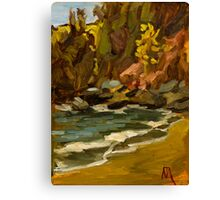 Mary's Cove, nr Brixham Canvas Print