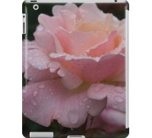 Rose and Rain in Pink iPad Case/Skin