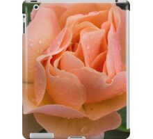 Peach Rose with Raindrops iPad Case/Skin