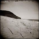 { Stanwell Park Beach } by Lucia Fischer