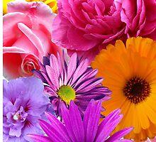 Flowers by ghjura