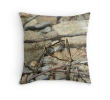 DragonflyUnion Throw Pillow