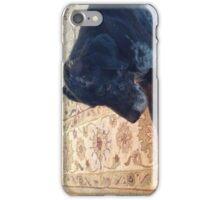 Black Dog iPhone Case/Skin