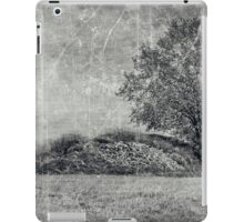 Serenity Hill iPad Case/Skin