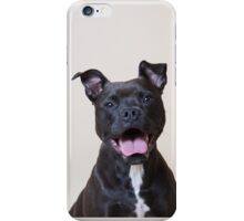 Boxer staffy phone case iPhone Case/Skin
