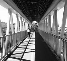 Walk in the white by shuttjain