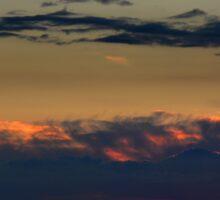 Aubergine Sunset - photography Sticker