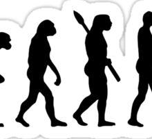 Evolution female graphic artist Sticker