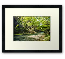 Green Stream: Arrowtown  Framed Print