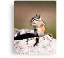 Just A Little Nibble Canvas Print