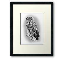 Great Grey Owl Framed Print