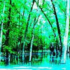 Trees In Water by John Novis