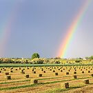Just Another Country Rainbow by Bo Insogna
