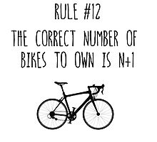 Rule #12 The correct number of bikes to own is n+1 by BonniePortraits
