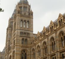 The Natural History Museum Building Sticker