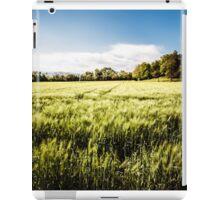 italian fields in the countryside iPad Case/Skin
