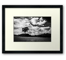 lonely tree in the italian countryside Framed Print