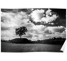 lonely tree in the italian countryside Poster