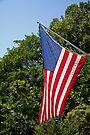 Red, White, Blue - the Stars and Stripes by WalnutHill