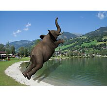 Belly Flop Photographic Print