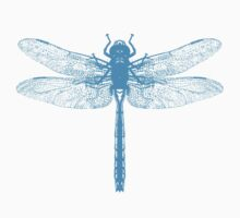 Dragonfly Blue by Zehda