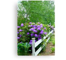 The Cottage Fence Canvas Print
