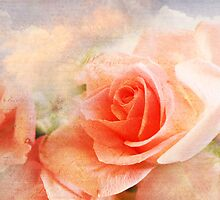 Salmon Pink Rose Collage Art  by MaureenAstrid