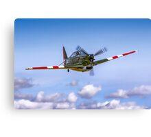 EFW D-3801 J-143 HB-RCF in flight Canvas Print