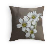 Snow-In-Summer white flower Throw Pillow Throw Pillow