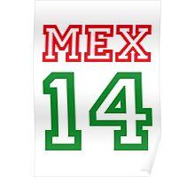 MEXICO 2014 Poster