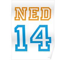 NETHERLANDS 2014 Poster