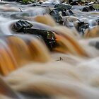 Rushing waters by Mark Williams
