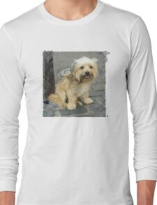 Louie the Shorkie-Tzu : Shih Tzu Yorkshire Terrier (Yorkie) Mix Long Sleeve T-Shirt