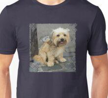 Louie the Shorkie-Tzu : Shih Tzu Yorkshire Terrier (Yorkie) Mix Unisex T-Shirt