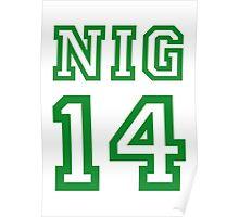 NIGERIA 2014 Poster