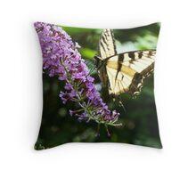 Butterfly05 Throw Pillow