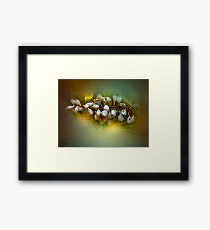 Nature Glows Framed Print