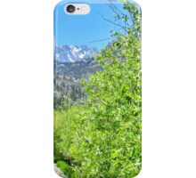 A Mountain Drive iPhone Case/Skin