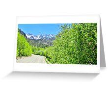A Mountain Drive Greeting Card